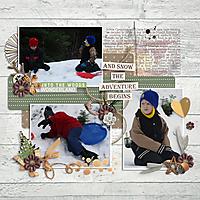 Snow-Adventure-small.jpg