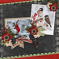 Snow-Birds.jpg