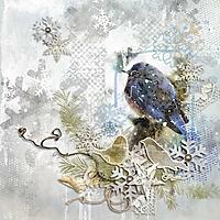 Snow_Bird.jpg