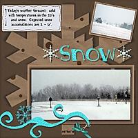 Snow_Jan_30_2010_500x500.jpg
