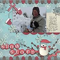 Snow_Storm_fdd_sm_copy.jpg
