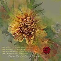 Song_of_the_Flower.jpg