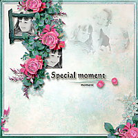 Special-Moments1.jpg