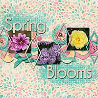 Spring-Blooms_2.jpg