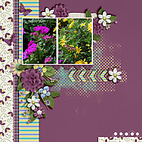 Spring-Has-Sprung1.jpg