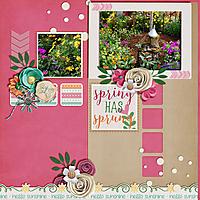Spring-Has-Sprung3.jpg