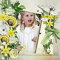 Spring-Jonquils.jpg
