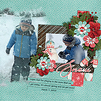 Spring-Snow1.jpg