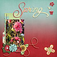 Spring41.jpg