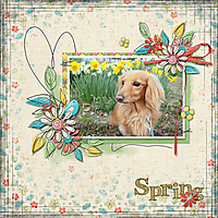 Spring72.jpg