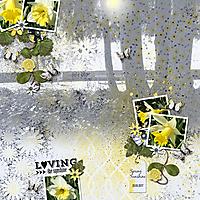 Spring_Sunshine.jpg