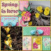 Spring_is_here3.jpg