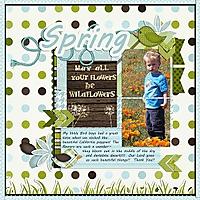 Spring_jbs-incrediblelife_rfw.jpg