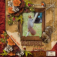 Squirrel-feeder.jpg