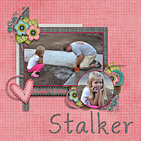 Stalker-500.jpg