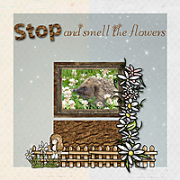 Stop-and-smell-the-flowers.jpg