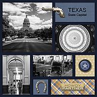 StoryGrids_Texas_web.jpg