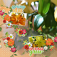 Suja-Bloom_and_Grow-600.jpg