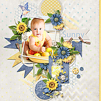 Sunny_web.jpg