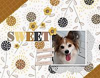 Sweet-06-18-17.jpg