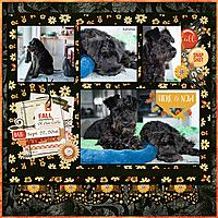 TB-Capture-Autumn-Kit-Life-Pages-6-JBS-2.jpg