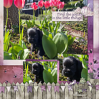 TB-Spring-in-my-Garden-8.jpg