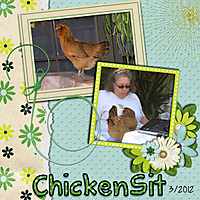 TMS_backyard_fun_chicken_-_Page_071.jpg