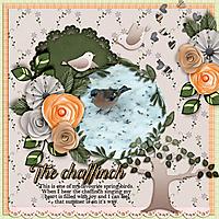 The-chaffinch.jpg