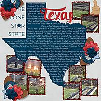 TheLoneStarState.jpg