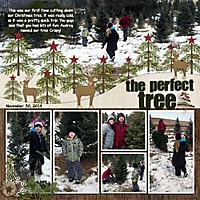 The_Perfect_Tree_2014_copy.jpg