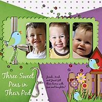 Three_sweet_peas_in_their_pod_small_edited-1.jpg