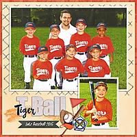 Tiger-TBall-2016-Tinci_AOM_3-copy.jpg
