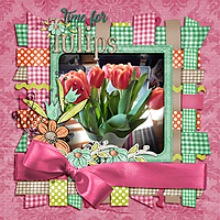 Time-for-tulips.jpg