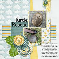 TurtleRescue.jpg