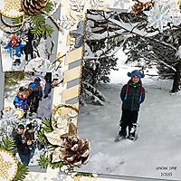 WEB_2015_SNOW_DAY.jpg