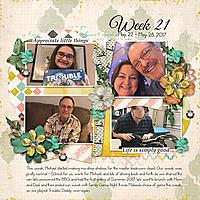 Week21_2017.jpg