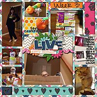 Week3L_2014_P2014Jan_cap_LKD_MyStoryv3.jpg