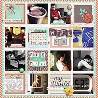 Week6_2015.jpg