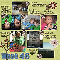 Week_46_600.jpg