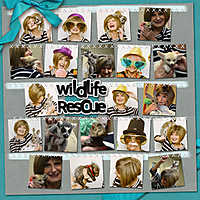 Wild-Life-Rescue-Page2_IBYDbyemj_DD_WEB.jpg