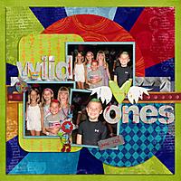 Wild-Ones.jpg