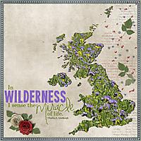 Wild_Flowers.jpg