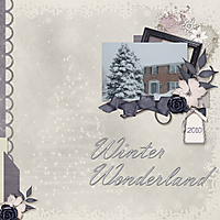 Winter-Wonderland11.jpg