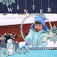 WinterFun_copy.jpg