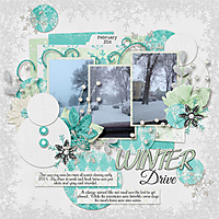Winter_Drive_2014.jpg
