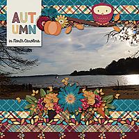 autumn_in_nc_lake_norman.jpg