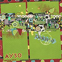 ayso2014web.jpg
