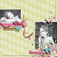 bhs_bouquetofblooms_temp4_kathywintersbutterflykit-gingersspeedscrap.jpg