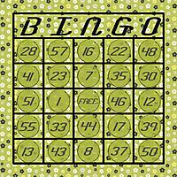 bingocard1.jpg