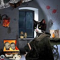 black-cat_krysty-scrap.jpg